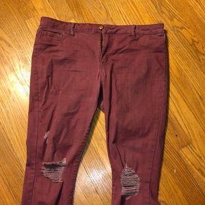 Burgundy Distressed Jeans